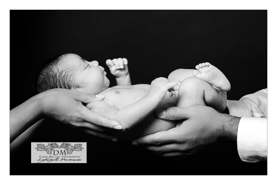 nj - nyc newborn photographers