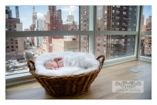 Fine art NYC newborn photographer
