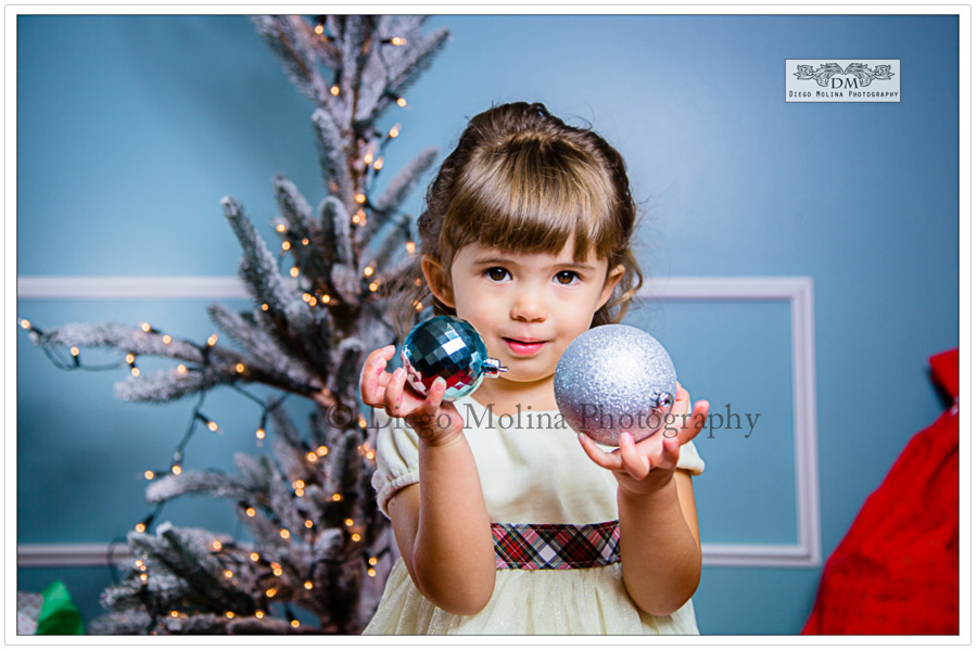 Perfect mini photography mini session holiday cards