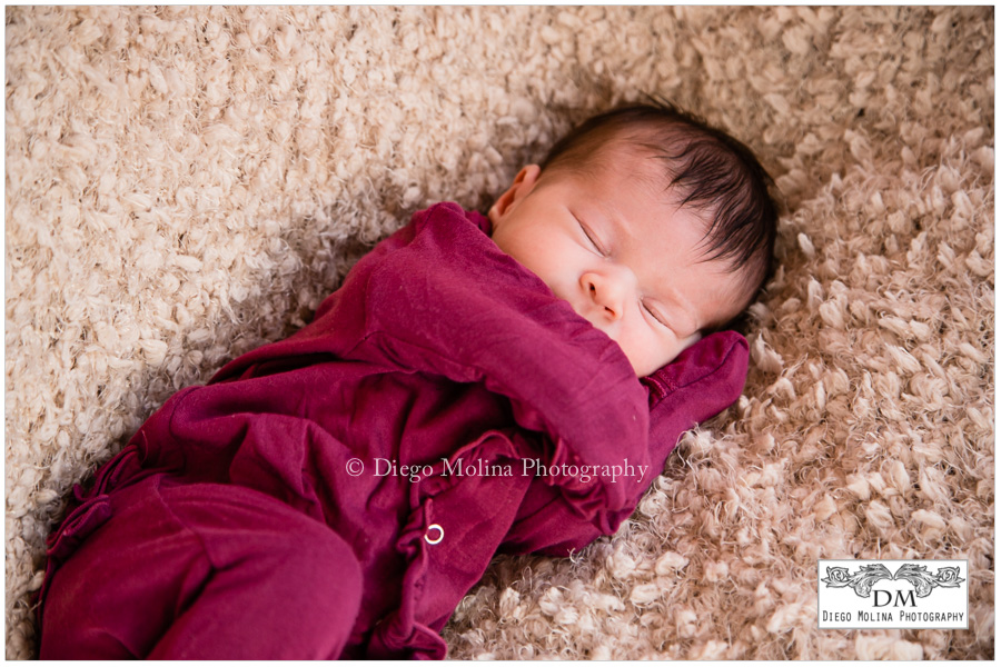 Newborn and Family Photographers Hoboken, New Jersey