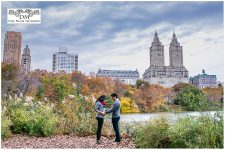 Central Park: Maternity Photography in New York City