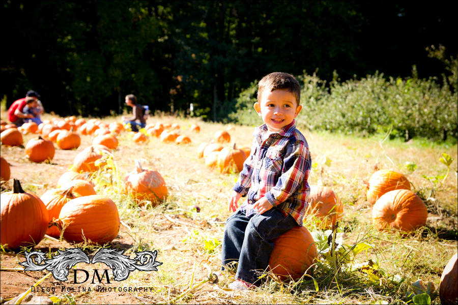 family photographer demurest nj