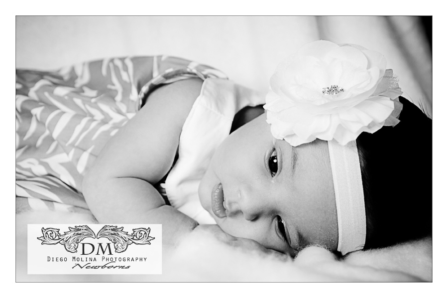 Newborn baby photography session