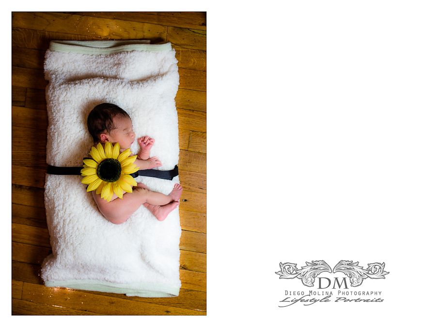 newborn portraits session